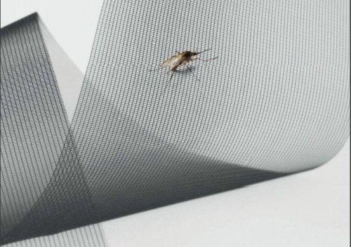 Insektenschutz MHZ bei Wohnkultur Baumgartner